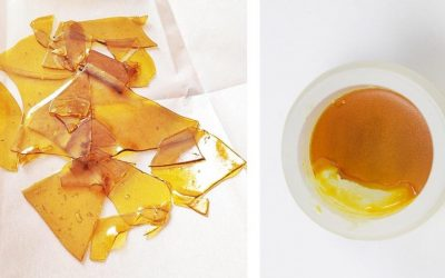 Difference Between BHO Wax and Shatter